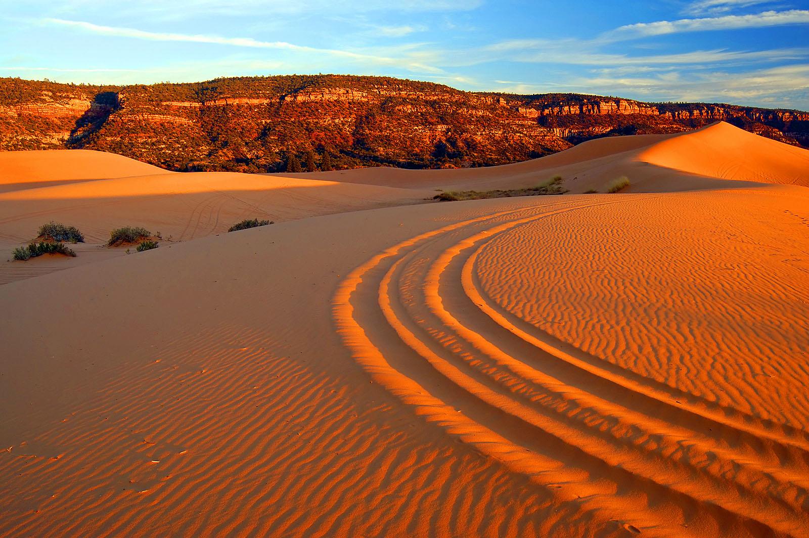 coral-pink-sand-dunes-four-wheeler-tracks-tyler-cornell-kcot