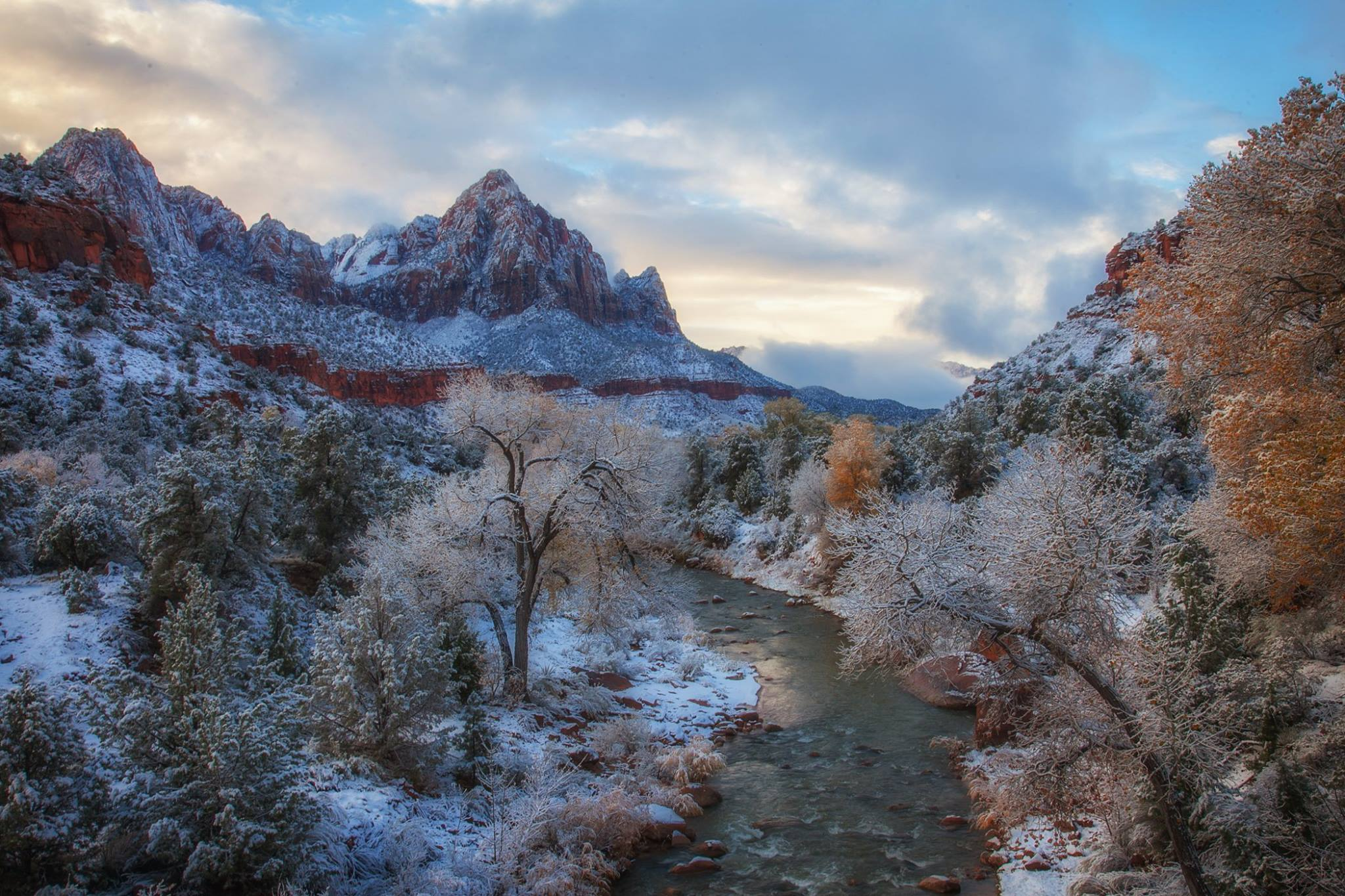 Der Zion Nationalpark als Winter-Wunderland