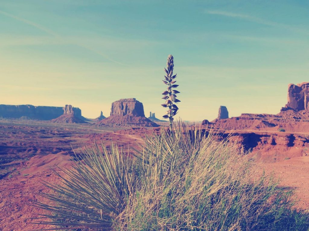Monument Valley. Foto Credit: Allison Yamamoto-Sparks